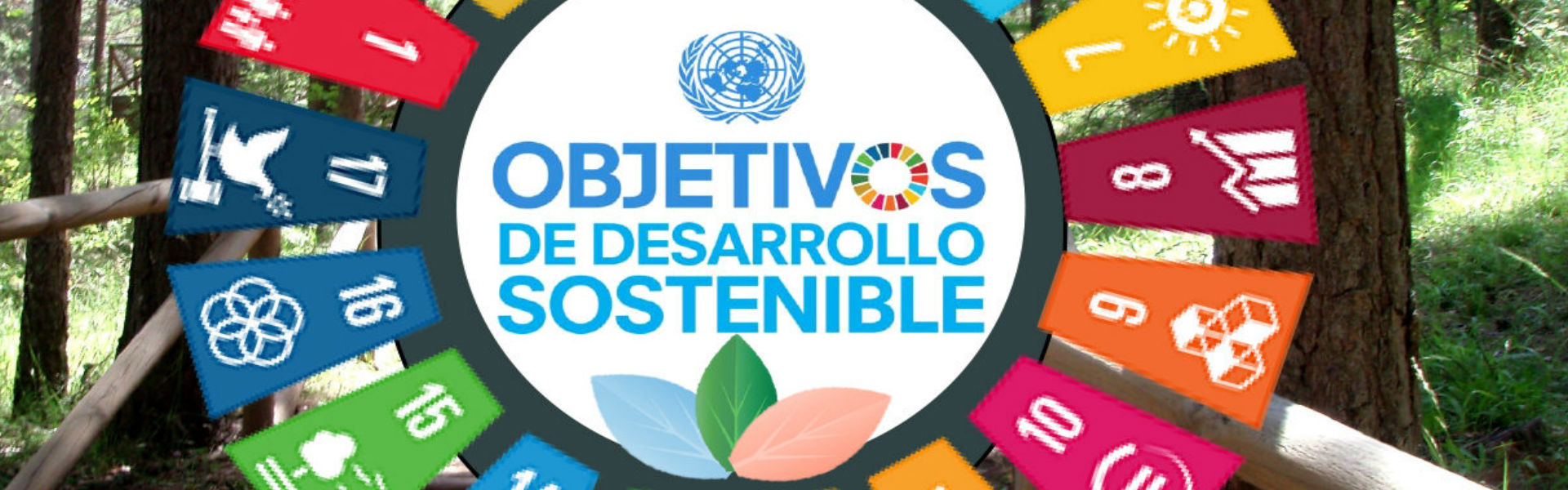 The University of Murcia joins the 2030 Agenda for Sustainable Development and its 17 Sustainable Development Goals- SDGs
